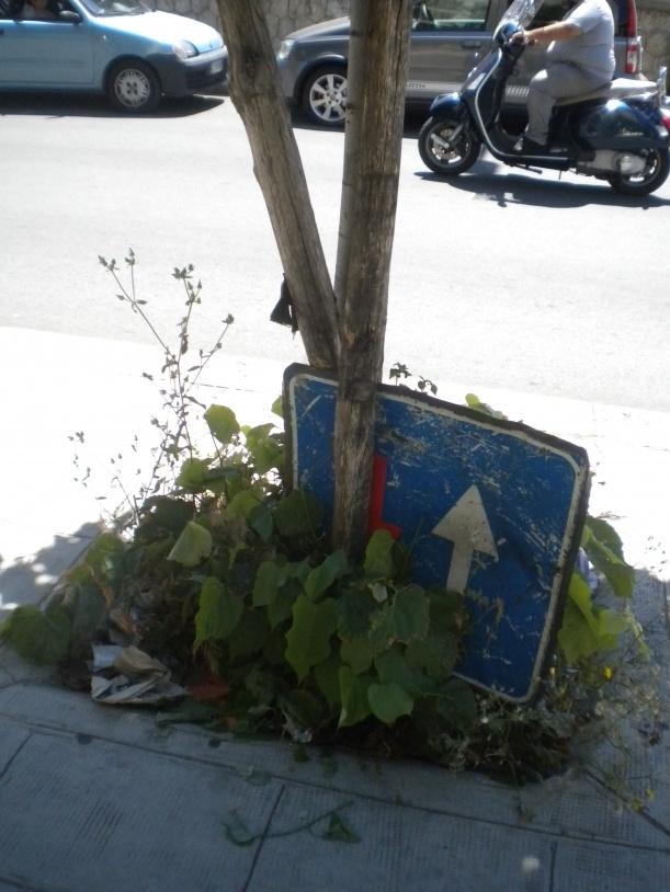 Le aiuole in Via Roccazzo, a Passo di Rigano, sono originali…oltre a un albero e qualche erbaccia, niente poco di meno che…un segnale stradale e tanta munnizza!