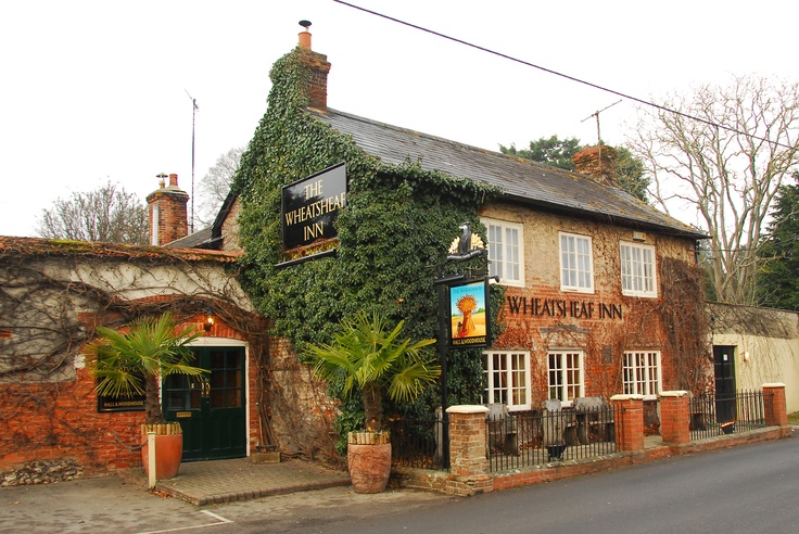 Dog Friendly Places To Eat In Salisbury