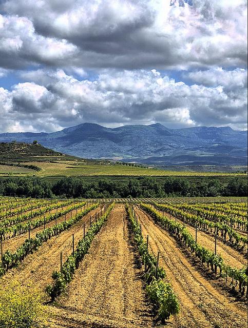 La Rioja - Spain