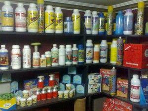 شركة رش مبيدات بالرياض - 0565597302