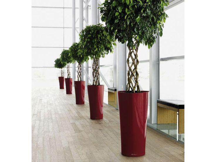 Big Pots Indoor Plants: Self Watering Tri-Delta Triangle Tall