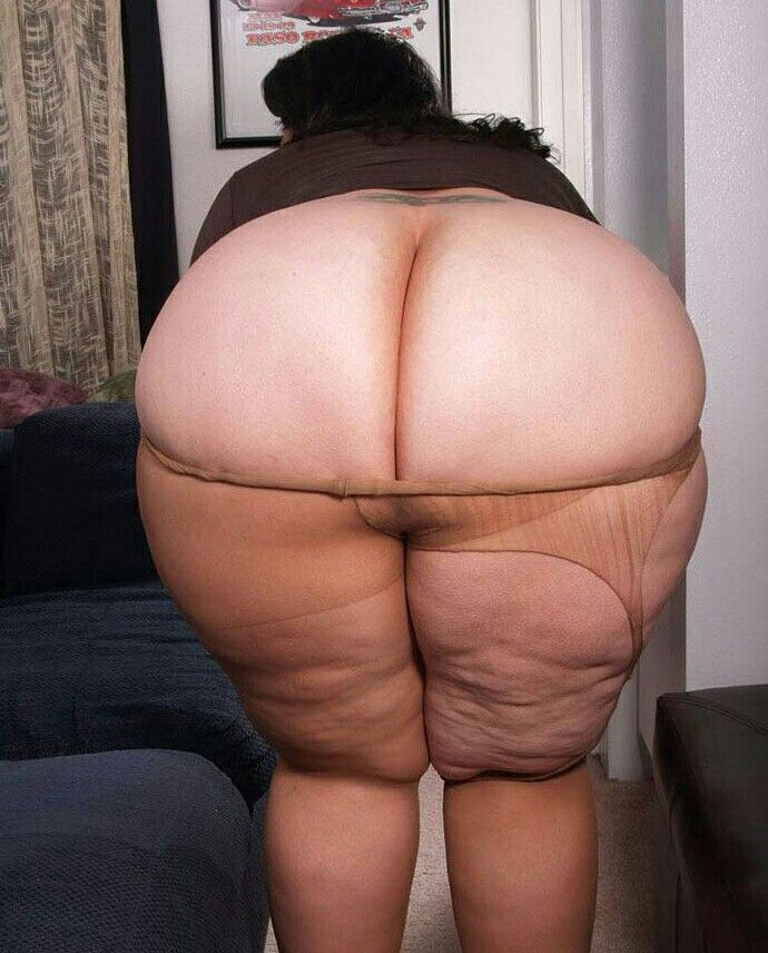 fat ass in tights