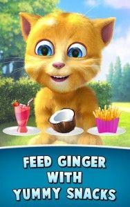 """My talking Tom hay Talking Angela chắc các bạn đã nghe rồi, vậy các bạn đã thử tải game talking Ginger 2 về máy dùng thử chưa? Mình chắc rằng chỉ cần chơi thử bạn sẽ không nỡ rời xa chú mèo đáng yêu này đâu. Nhìn ánh mắt của chú ta là cưng không chịu được: lông vàng, mắt xanh, giọng nhói nhẹ nhàng… nói chung là khá """"dễ ghét"""" bạn nên tải hack game talking Ginger 2 về máy để được full tiền mua sắm và tổ chức một buổi sinh nhật hoành tráng cho ginger, game được crack full màn chơi."""