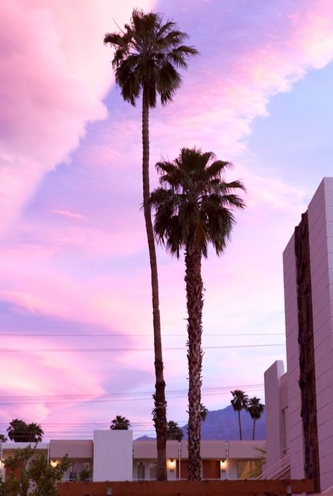 Purple Sky. Shop the Matthew Williamson luxury beachwear collection at our online boutique.