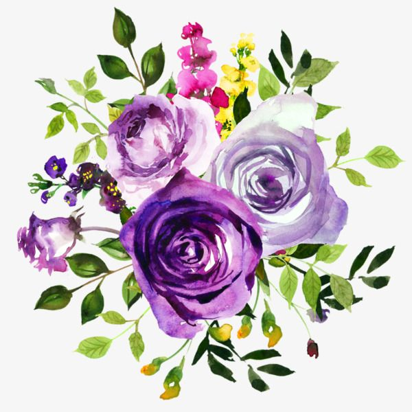 Purple Roses Watercolor Green Leaves Yellow Flowers Png