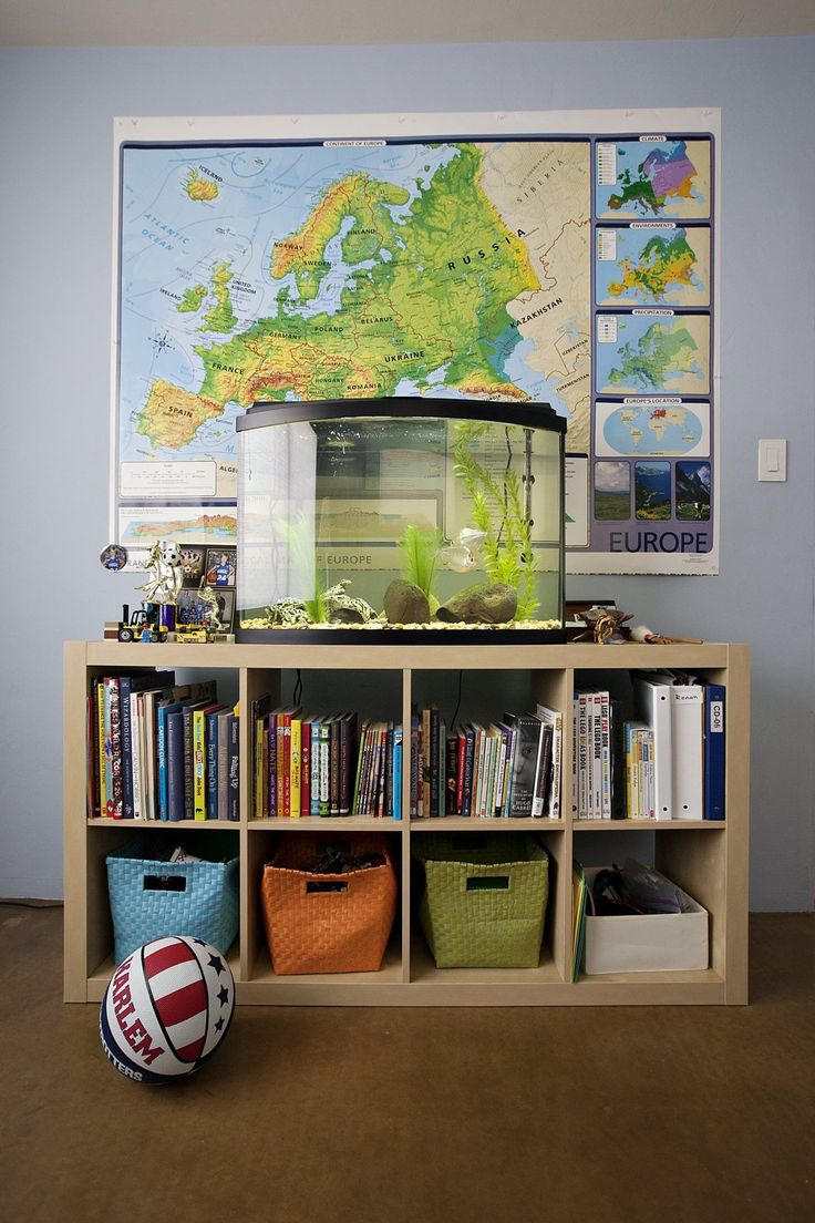 Kristoffer carrie 39 s creative home house tours for Bookshelf fish tank