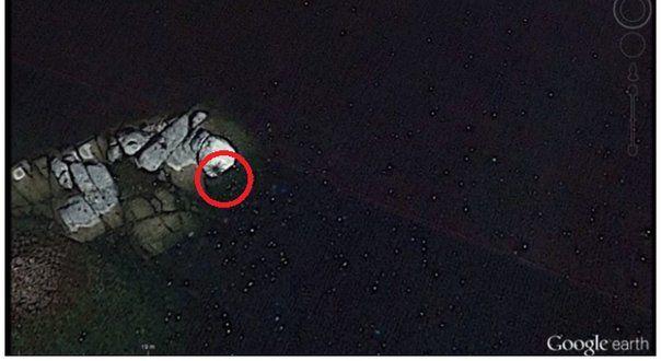 """#YouTube: Google captó supuesta """"araña gigante"""" en rocas de mar (VIDEO) - Diario Correo: Diario Correo YouTube: Google captó supuesta…"""