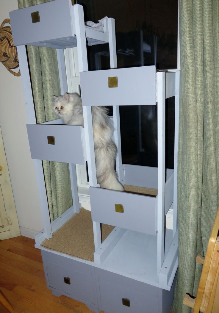 17 Best Ideas About Cat Towers On Pinterest Cat Play