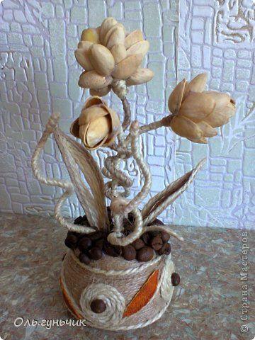 Шпагатно-фисташковый цветок МК