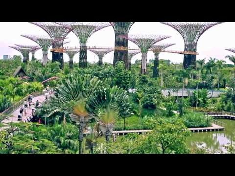 Singapore - Your singapore