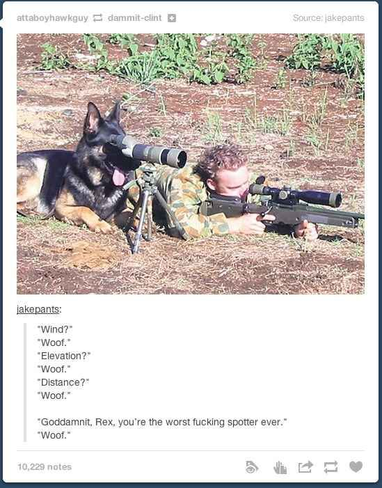 When they looked into some options for the future of the military.   36 Times Tumblr Proved It Was The Funniest Place On The Internet