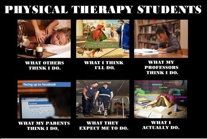 physical therapy memes | ... think I do / what I really do meme for physical therapy students