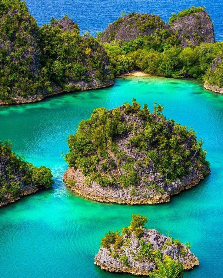 """""""Raja Ampat eilanden! De mooiste duikgebieden ter wereld! #rajaampat #indonesie #asia #indonesia #island #blue #sea #diving #beautiful #nature #instatravel…"""""""