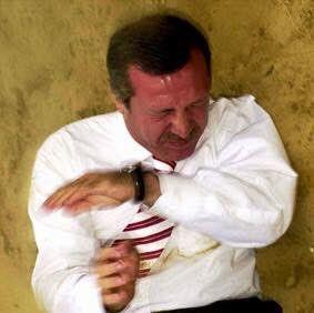 Αποτέλεσμα εικόνας για horse erdogan ball