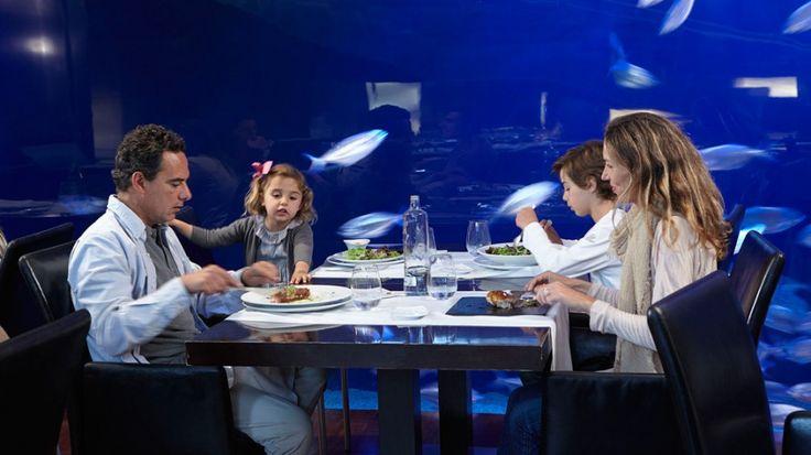 Restaurante submarino Oceanogràfic   Oceanogràfic Valencia Web Oficial - Compra tus entradas online y accede sin colas en taquillas