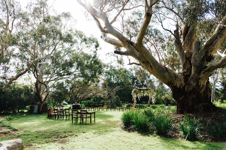 Barn1890 McLaren Vale Winter Wedding 014.jpg