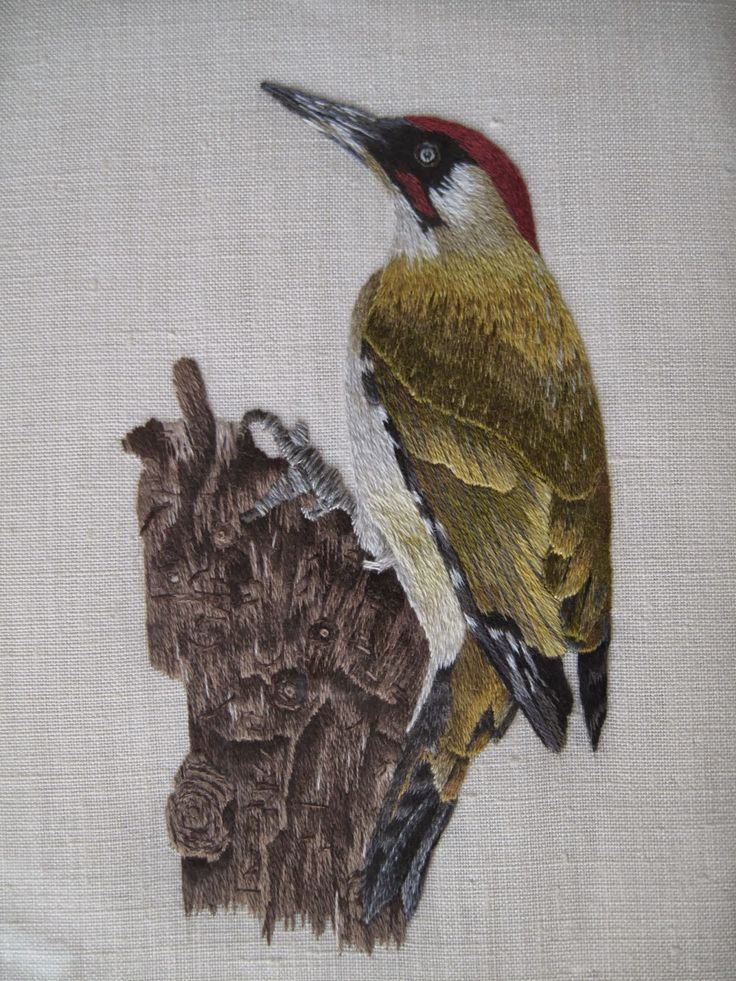 Silk Embroidery of a green woodpecker.