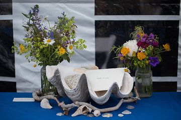 Photo by Summer Street Photography.  Large clam shell for reception card holder.  Shells and driftwood.