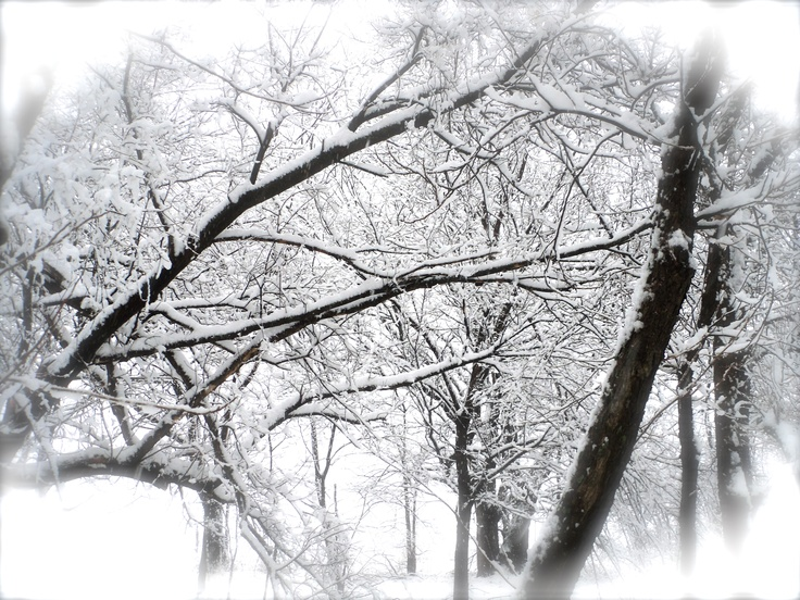 snowflake's fallin'