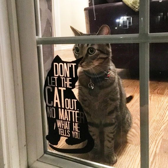 Cat decal cat sign Don't Let the Cat Out. No by MonsterAndMunchkin
