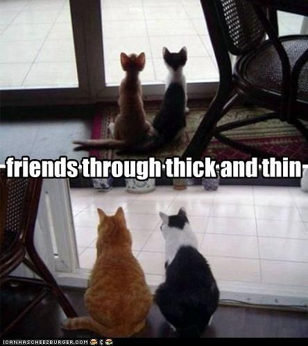 Friends through thick and thin.  Yep...this was Judy and me.