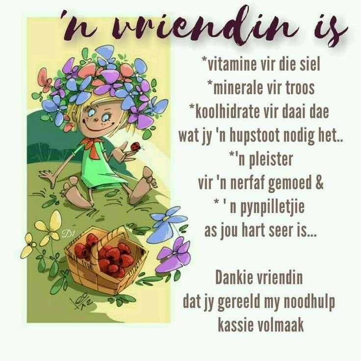 'N Vriendin is