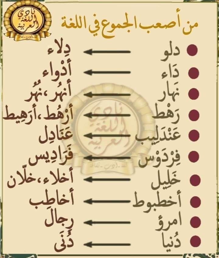 Robe Longue De Soiree Avec Manches Courtes Raffinees Et De La Dentelle Noire Transparente Autour Du Cou R Arabic Language Learn Arabic Alphabet Arabic Langauge