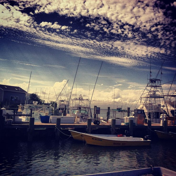 32 best fishing ocean city md images on pinterest ocean for Ocean city md fishing