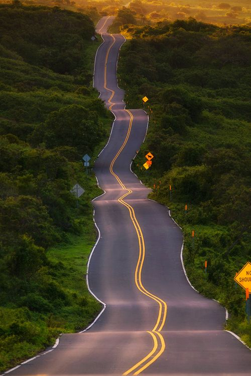 Hana Highway, Maui, Hawaii... Check!  They call it the drunken highway! Gonna have to check this out.