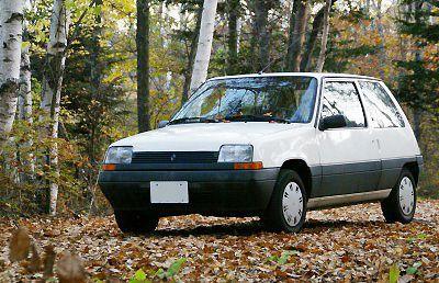 Renault 5 in Nagano,Japan
