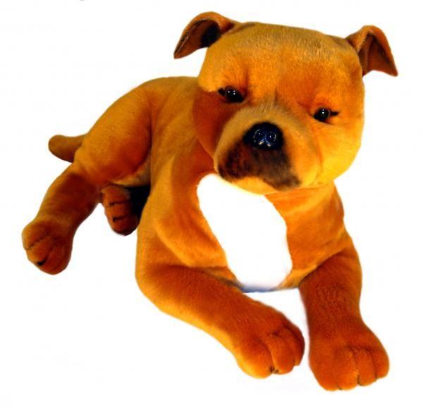 21 best Staffordshire Bull Terrier images on Pinterest ...