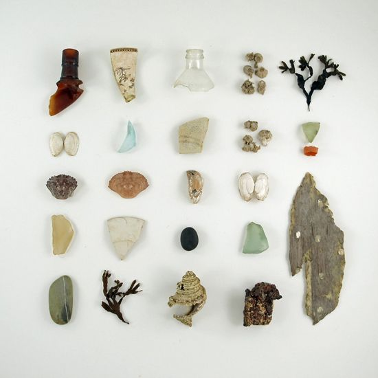 Beach finds! Can't wait for summer. #photography #summer #beach #treasures