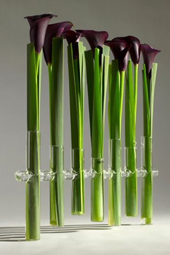 Serax - Belgian floral design supplies