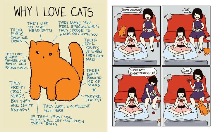 12Why-I-Love-Cats.jpg 1.024×630 pixels