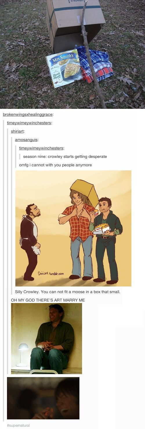 Silly Crowley, you cannot fit a moose in a box that small hahaha tumblr makes me so happy