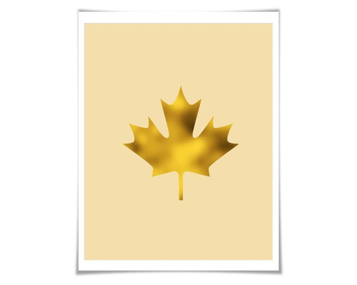 Maple Leaf Gold Foil Art Print. 36 Colours/3 Sizes. Canada Art. Canadian Flag. Canada Poster Nature Tree Leaves. A lovely and sparkly single maple leaf art print, made with real foil. ** You can choose from three different foil colours: gold, silver or copper. When you place your order, simply use the drop down menu on the order page to choose which foil you would like. For your background colour, you can choose from one of 36 different colours. Please see the second image above to view…