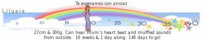 regla de las semanas del embarazo