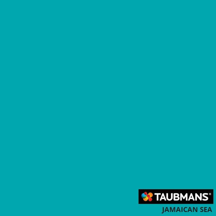 #Taubmanscolour #jamaicansea