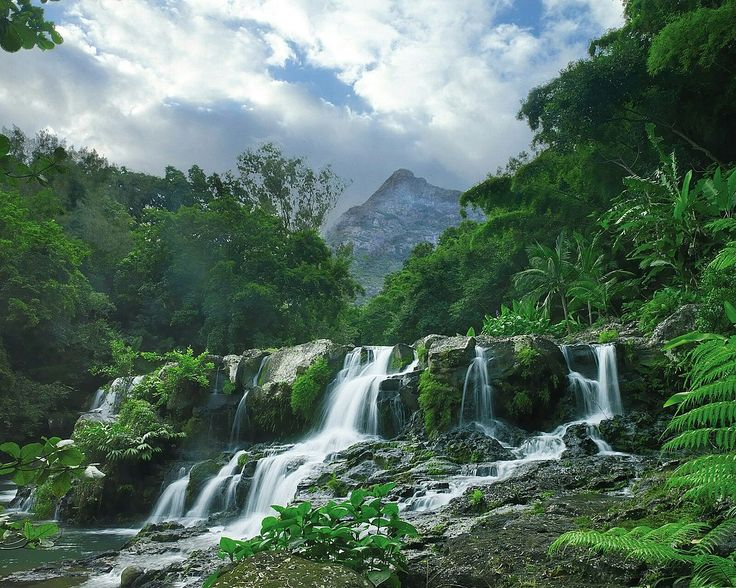 The largest park of Mauritius is famous for its rocky landscapes and waterfalls, perfect for hiking trails.
