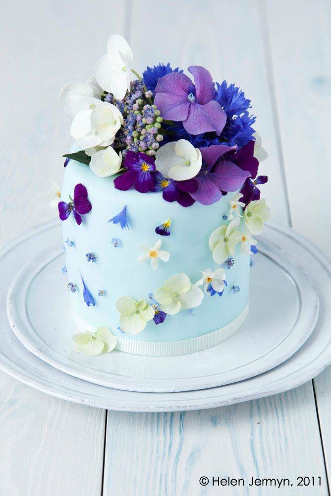 Beautiful Cake Pictures Mini Blue With Flowers Cakes Flower Little