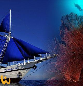 Tubbataha Reef - das Juwel der Sulu-See! #philippinen #tubbataha #wirodive #sommer #sonne #born2dive #oceanlover #urlaub #lebedeinleben #tauchreisen #erlebnisreisen #einfachwow