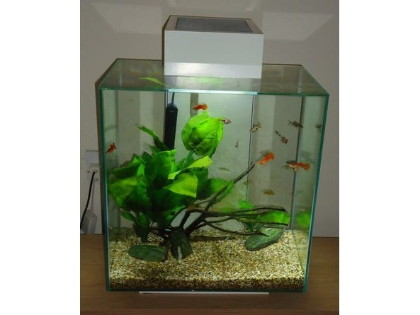 fluval nano aquariums fluval edge 46l aquariums pinterest aquarium and nano aquarium. Black Bedroom Furniture Sets. Home Design Ideas