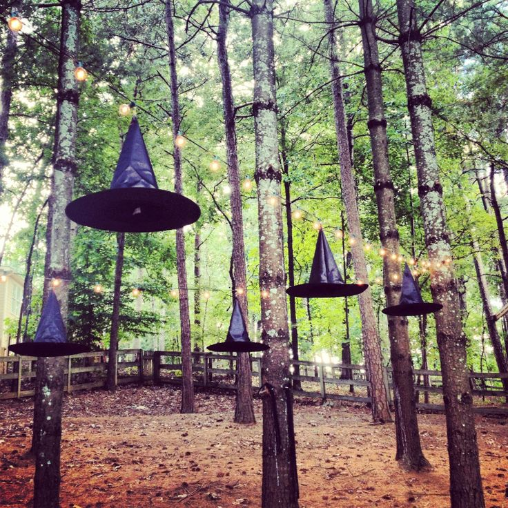 photo(679).JPG 1,600×1,600 pixels Hang some witch hats on the ceiling for a little witch party