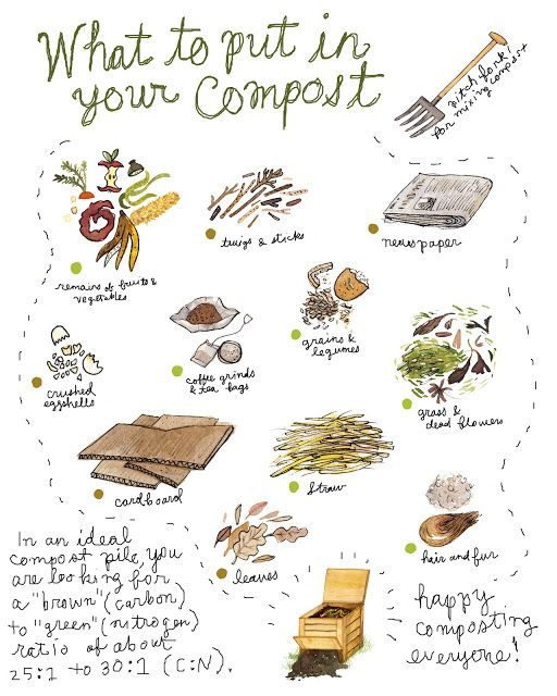 COMPOSTING. All about the greens and browns. Loving these illustrations by Robin Clugston