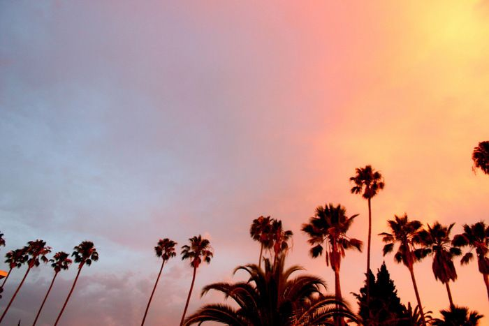 A multicolor sunset for today's #inspiration. (Image from WGSN)