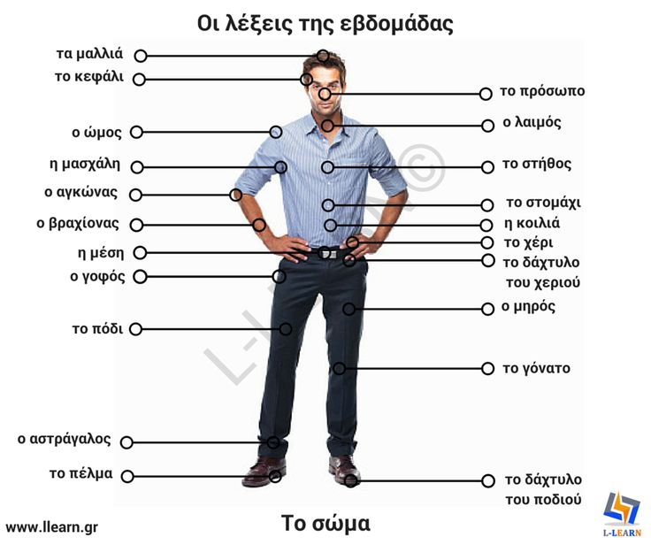 english on greeks Find greek translations in our english-greek dictionary and in 1,000,000,000 translations.