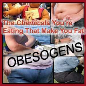 17 best images about obesogens chemicals that make you fat for Can you eat fish everyday