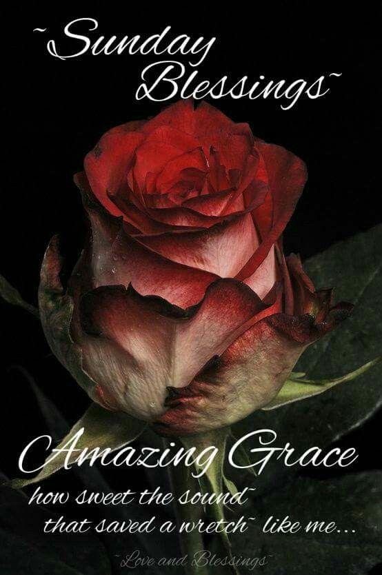 ~Sunday Blessings ~