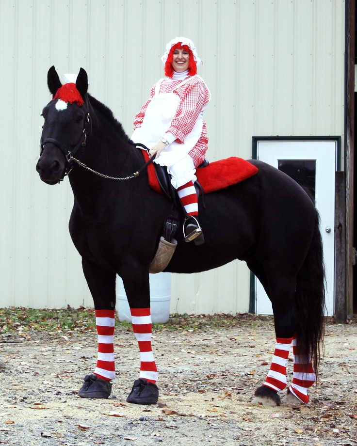 290 best halloween horse costume images on pinterest horses halloween horse costume solutioingenieria Gallery