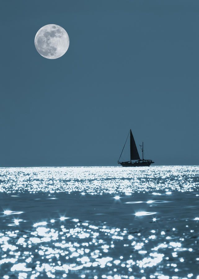 Sailing At Night Photograph  - Sailing At Night Fine Art Print